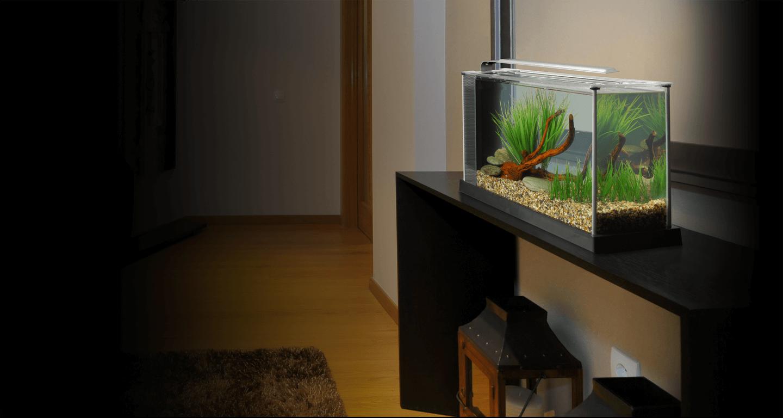 Fluval Spec Desktop Freshwater